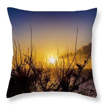 Tree Sunset Throw Pillow