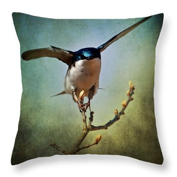 Tree Swallow 2 Throw Pillow
