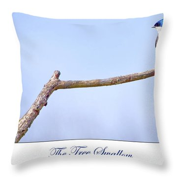 Tree Swallow On Branch Throw Pillow
