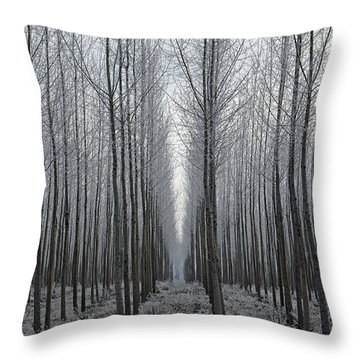 Tree Symmetry Throw Pillow