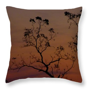 Throw Pillow featuring the photograph Tree Top After Sunset by Donald C Morgan