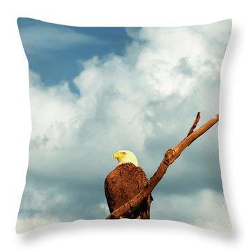 Tree Top Eagle  Throw Pillow