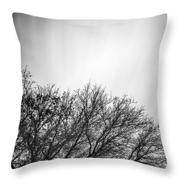 Tree Top With Moving Clouds Throw Pillow