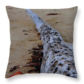 Tree Trunk And Shell On The Beach Full Size Throw Pillow