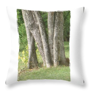 Throw Pillow featuring the photograph Tree Trunks by Shirley Moravec