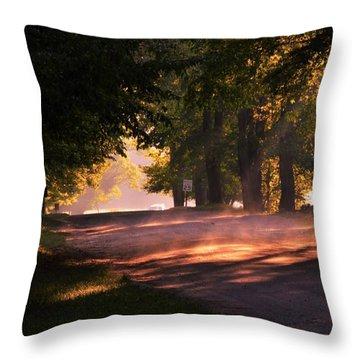 Tree Tunnel Throw Pillow