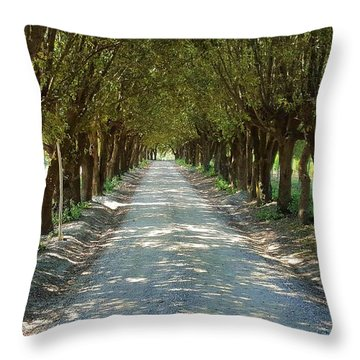 Throw Pillow featuring the photograph Tree Tunnel by Valentino Visentini