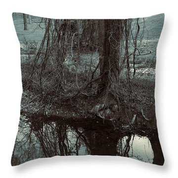 Throw Pillow featuring the photograph Tree Vines Water by Robert G Kernodle