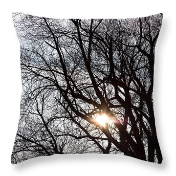 Throw Pillow featuring the photograph Tree With A Heart by James BO Insogna