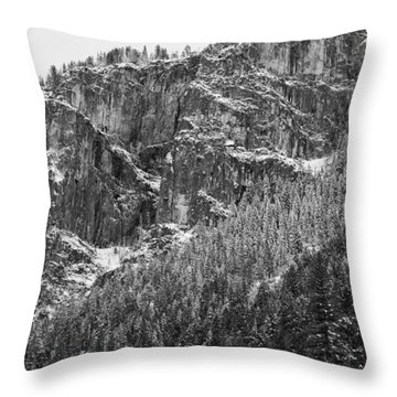 Treefall Throw Pillow