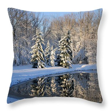 Treeflections Throw Pillow