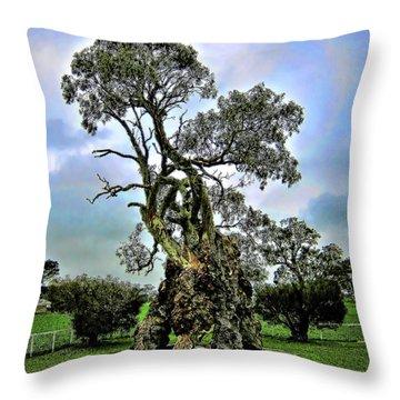 Treehouse Throw Pillow by Douglas Barnard