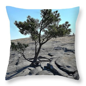 Trees 11 14 Throw Pillow