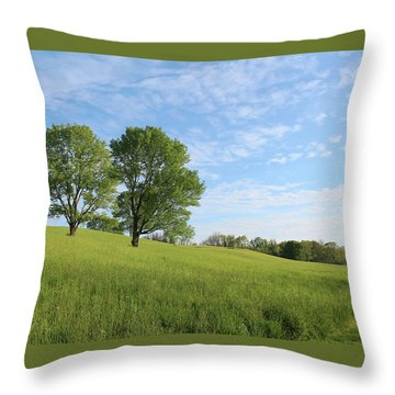 Summer Trees 3 Throw Pillow