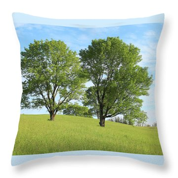 Summer Trees 4 Throw Pillow