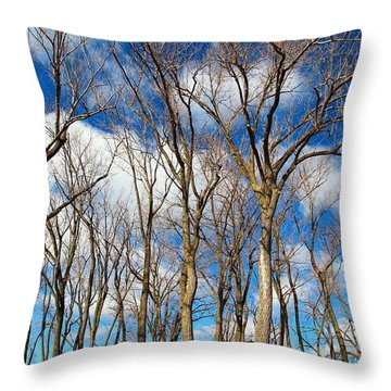 Throw Pillow featuring the photograph Trees And Clouds by Valentino Visentini