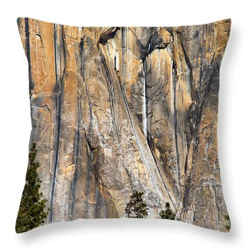 Trees And Granite Throw Pillow