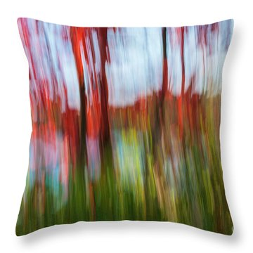 Throw Pillow featuring the photograph Trees And Lake by Elena Elisseeva