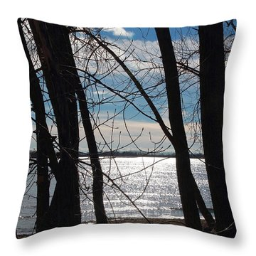 Throw Pillow featuring the photograph Trees And Lake Reflections by Valentino Visentini