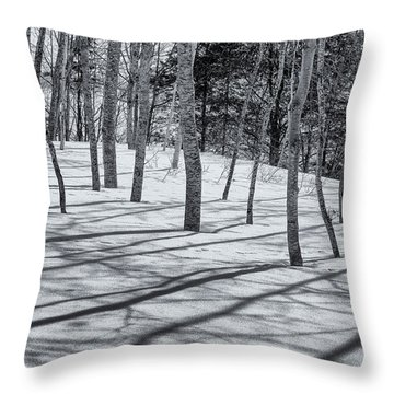 Throw Pillow featuring the photograph Trees And Shadows by Tom Singleton
