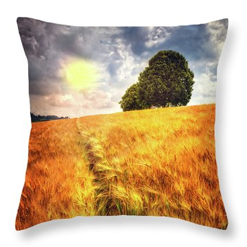 Throw Pillow featuring the photograph Trees At The Top by Debra and Dave Vanderlaan