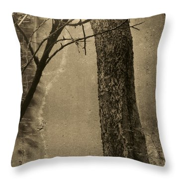 Trees Growing In Silo - Square 2015 Edition - Brown Throw Pillow by Tony Grider