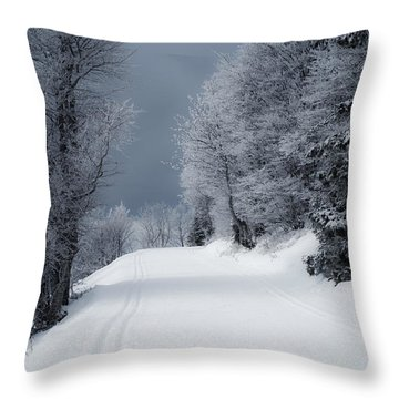 Trees Hills And Snow Throw Pillow by Miguel Winterpacht
