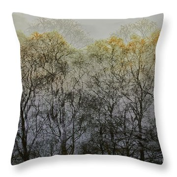 Throw Pillow featuring the photograph Trees Illuminated By Faint Sunshine, Double Exposed Image by Nick Biemans