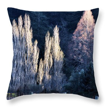 Trees In Fall Napa Valley Throw Pillow