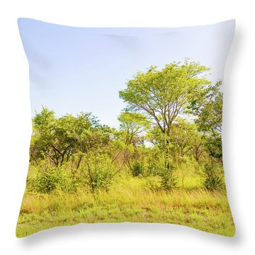 Trees In Zambia Throw Pillow