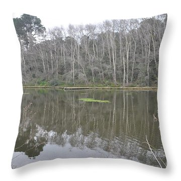 Trees Throw Pillow by Linda Ferreira