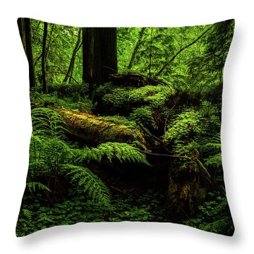 Throw Pillow featuring the photograph Trees Of Mystery by TL Mair