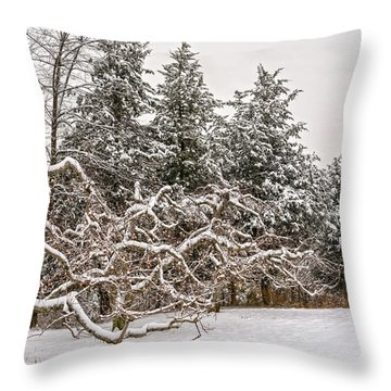 Trees Of Winter Throw Pillow