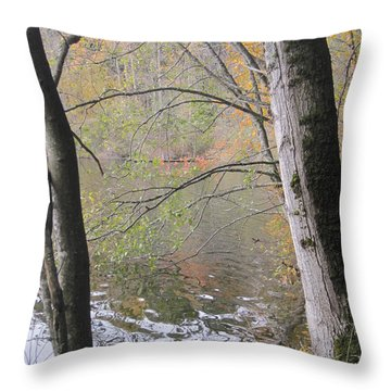 Trees On Lake Padden Throw Pillow by Karen Molenaar Terrell