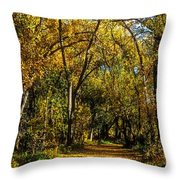 Trees Over A Path Through The Woods In Fall Color Throw Pillow