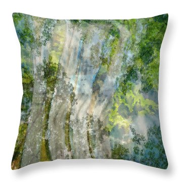 Trees Over Highway Throw Pillow