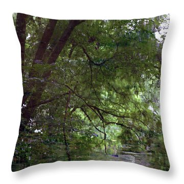 Trees Reflected In A Woodland Stream 2867 H_2 Throw Pillow
