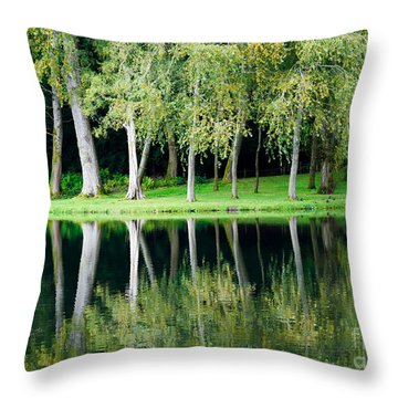 Throw Pillow featuring the photograph Trees Reflected In Water by Colin Rayner