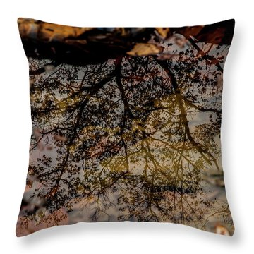 Throw Pillow featuring the photograph Tree's Reflection by Iris Greenwell