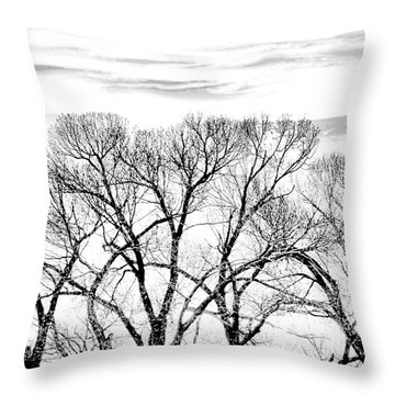 Throw Pillow featuring the photograph Trees Silhouette Black And White by Jennie Marie Schell