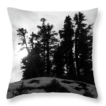 Trees Silhouettes Throw Pillow