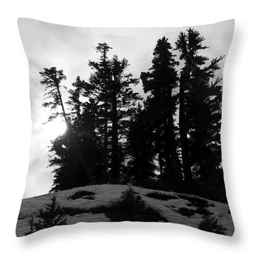 Throw Pillow featuring the photograph Trees Silhouettes by Yulia Kazansky