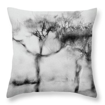 Trees Through The Window Throw Pillow by Celso Bressan