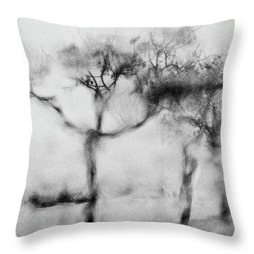 Trees Through The Window Throw Pillow