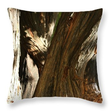 Trees Trunks Throw Pillow by Michele Wilson
