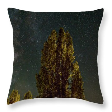 Trees Under The Milky Way On A Starry Night Throw Pillow