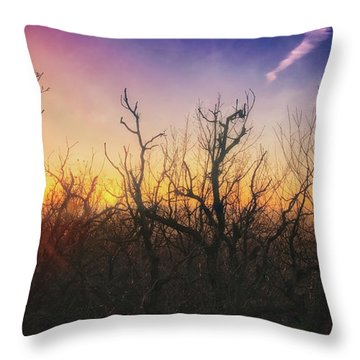 Throw Pillow featuring the photograph Treetop Silhouette - Sunset At Lapham Peak #1 by Jennifer Rondinelli Reilly - Fine Art Photography