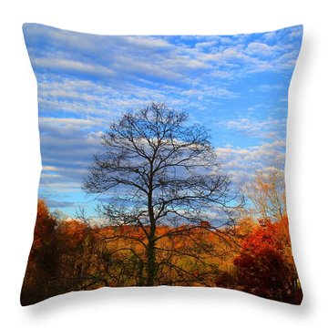 Throw Pillow featuring the photograph Treetops Sunrise by Kathryn Meyer