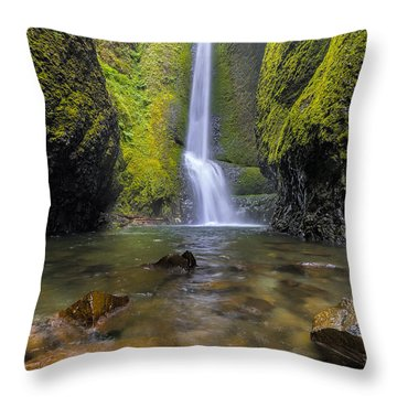Trek To Lower Oneonta Falls Throw Pillow by David Gn