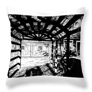 Trellis Pov Throw Pillow by Betsy Zimmerli